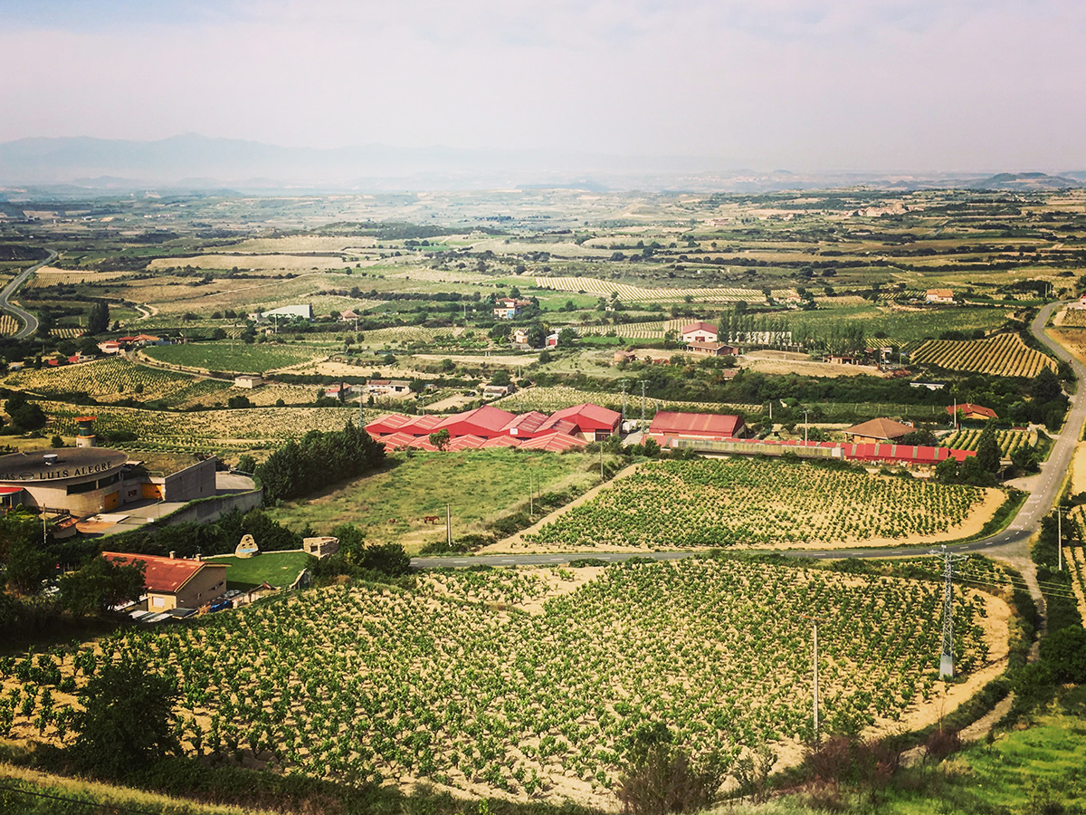 La Rioja wine tour - La Guardia - colorfulwines