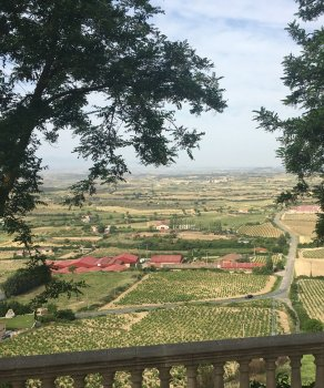 Rioja Wine Tour - Rioja Spanish Wines
