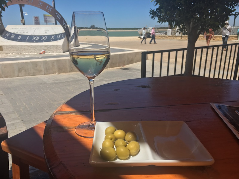 Manzanilla and green olives colorful wines