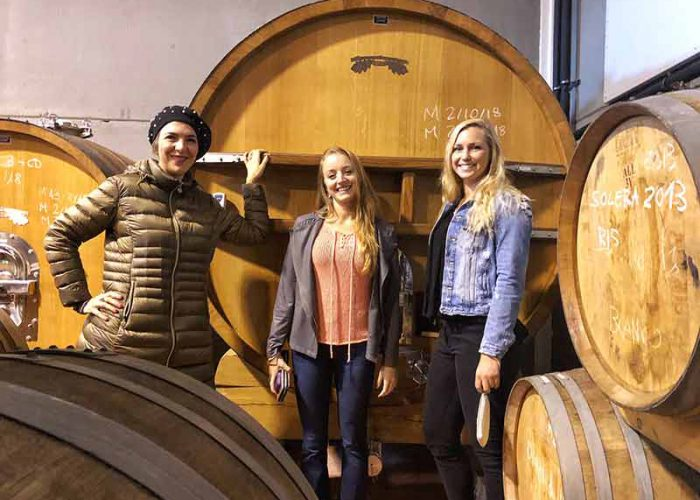 Colorfulwines-private-wine-tour-madrid