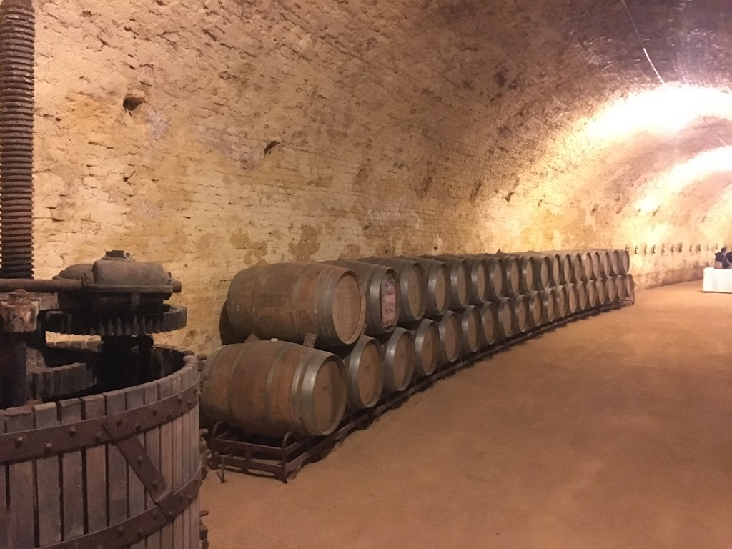 Impressive winery cellar at Bodega del Real Cortijo