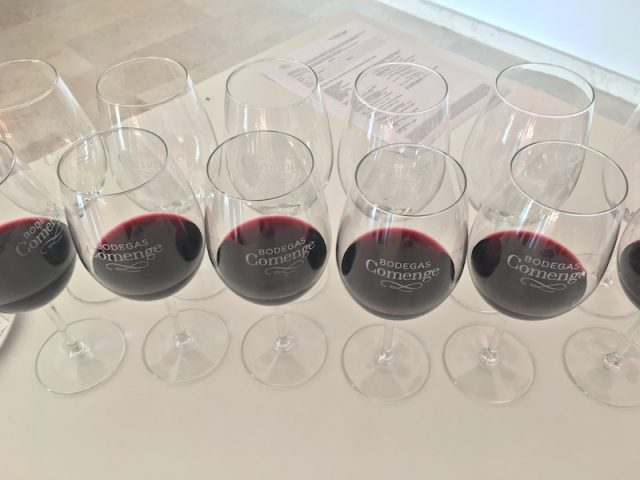 wine_Tasting_ribera_del_duero_colorful_wines