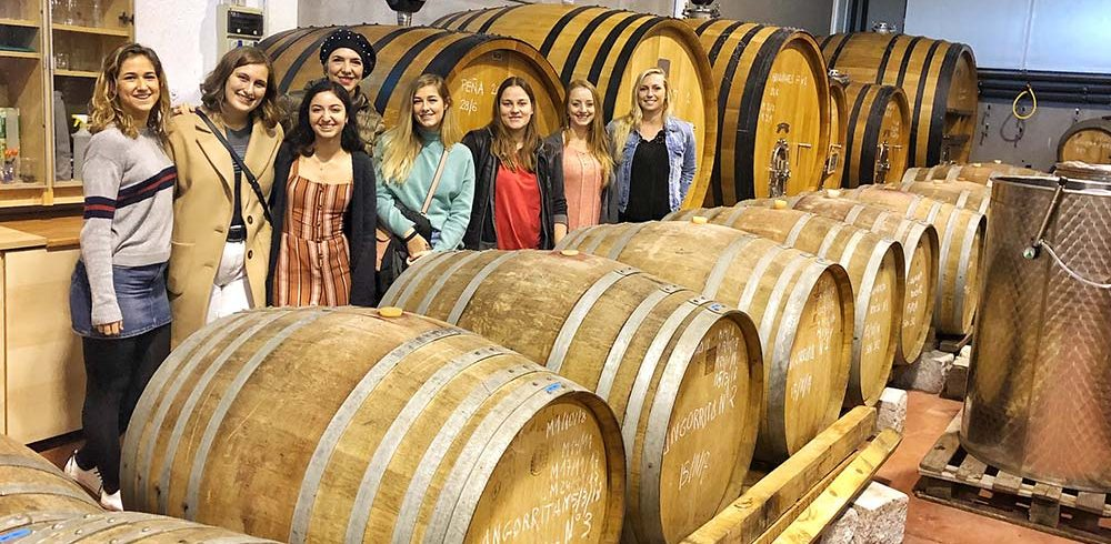 Wine cellar wine tour