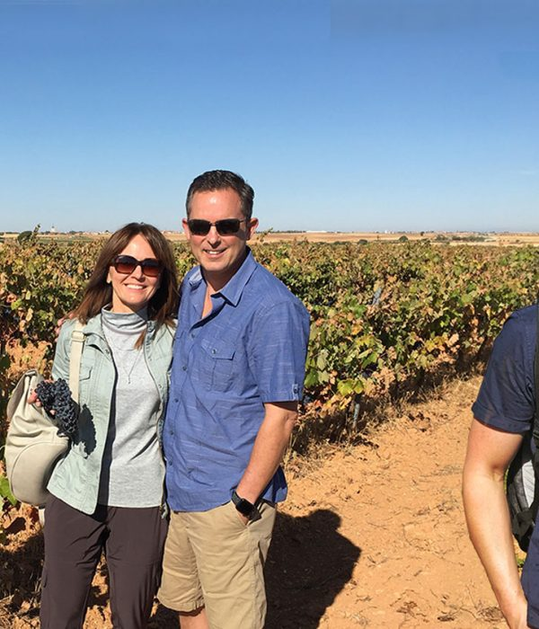 Private Wine tour near Madrid